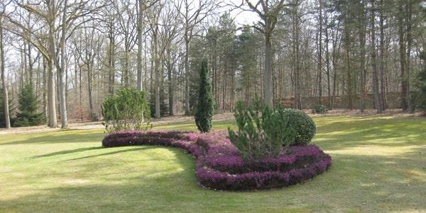 Plantation de massif et aménagement de jardins en Yvelines (78)